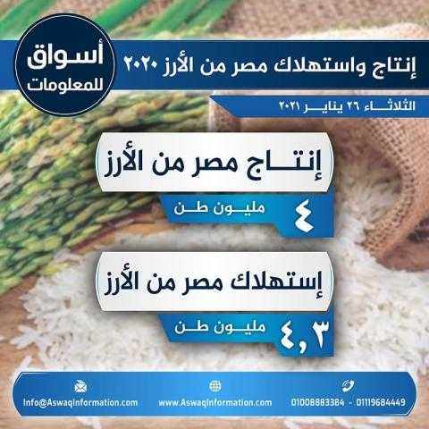 أسواق للمعلومات ترصد إنتاج واستهلاك مصر من الأرز لعام 2020..
