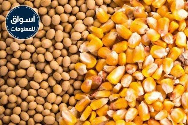 جمعية الإصلاح الزراعي بدكرنس تعلن عن ممارسة عامة لتوريد «ذرة صفراء - كسب فول صويا»