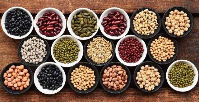 «كازاخستان» تحصد 13 مليون طن من الحبوب والبقوليات حتى الآن