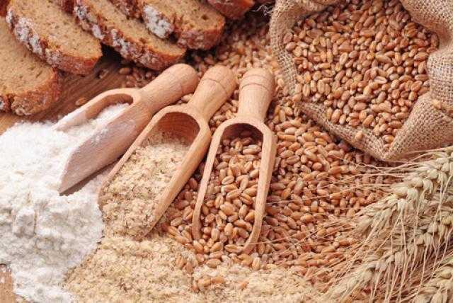 روسيا تحصد 100 مليون طن من الحبوب خلال العام الجاري