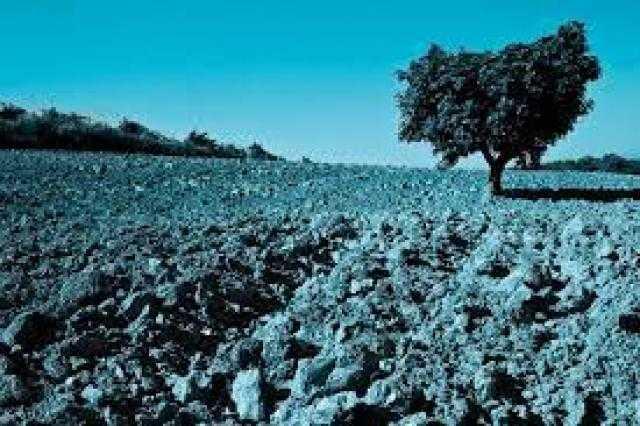 """ظاهرة """"لا نينا"""" تثير قلق المزارعون في أمريكا الجنوبية"""