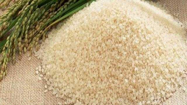 انخفاض أسعار الأرز العالمية في نهاية تداولات بورصة شيكاغو اليوم