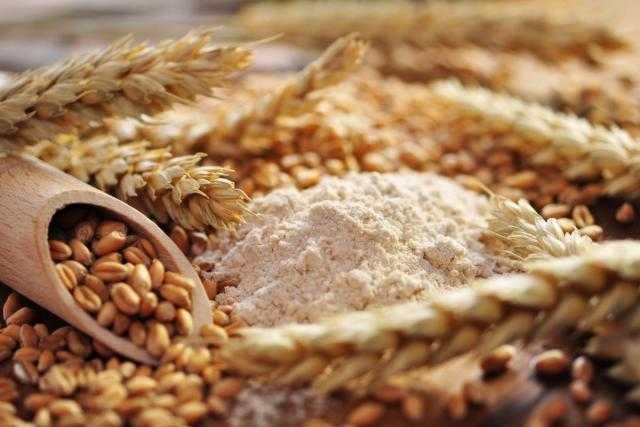 تراجع صادرات القمح والشعير الفرنسي خارج الإتحاد الأوروبي خلال سبتمبر