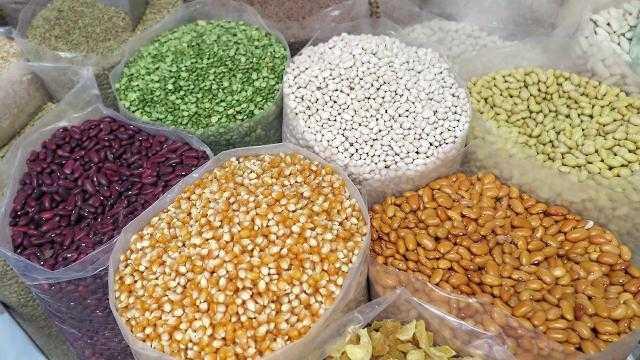 كازاخستان توشك على الانتهاء من حصاد حبوب وبقول الموسم الجديد