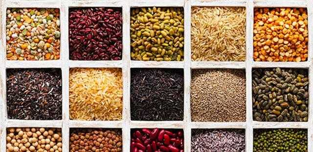 أوكرانيا تصدر أكثر من 2 مليون طن من الحبوب خلال أكتوبر