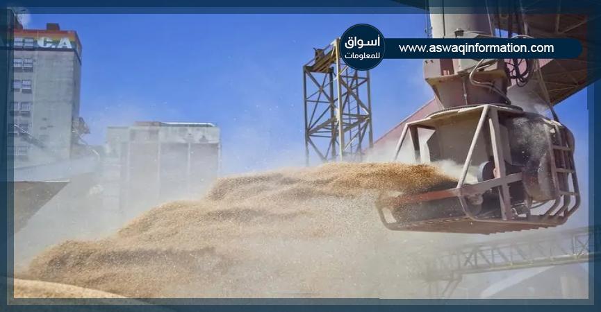 صادرات الحبوب