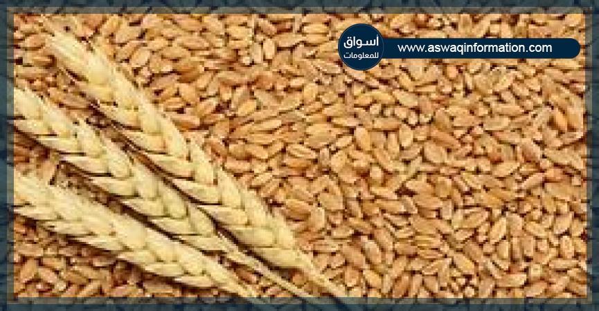 القمح والدقيق