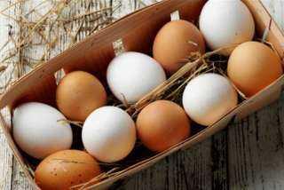 تعرف علي أسعار البيض في السوق المحلي المصري اليوم الأحد 12 سبتمبر 2021