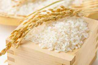 عقود الأرز الآجلة تغلق مرتفعة اليوم الجمعة في بورصة شيكاغو