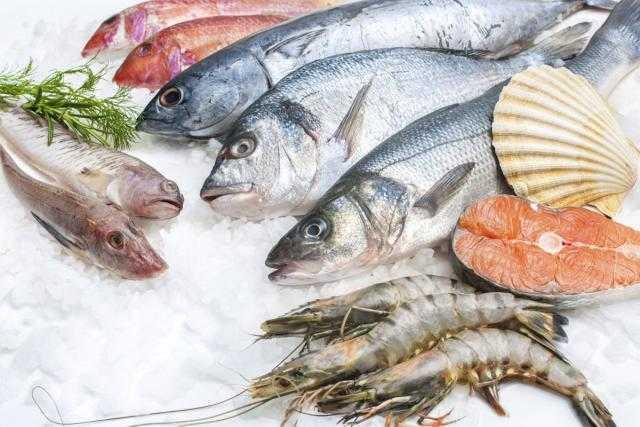 محافظة دمياط تعلن عن عدة مزايدات لبيع إنتاج المزارع السمكية