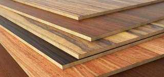 ارتفاع العقود الآجلة للخشب بنسبة 25% خلال سبتمبر بدعم من الطلب الموسمي في الولايات المتحدة