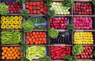 الخيار بـ10 جنيهات للكيلو .. أسعار الخضروات بالأسواق