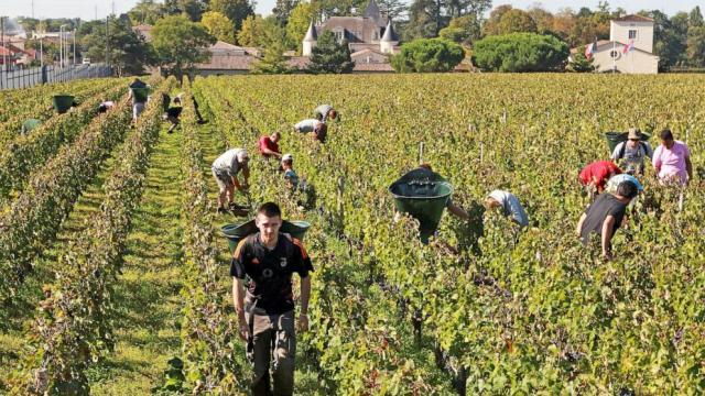 الزراعة - فرنسا
