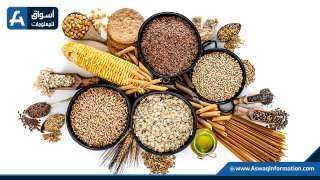 18 مليون طن حجم صادرات أوكرانيا من الحبوب خلال الموسم الجاري